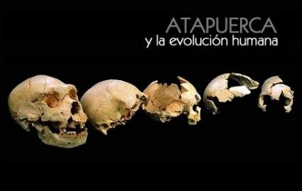 20101226120039-imag-1041-atapuerca-y-la-evolucion-humana-800x600-.jpg
