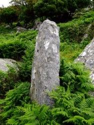 20101226120427-dolmen-800x600-800x600-.jpg