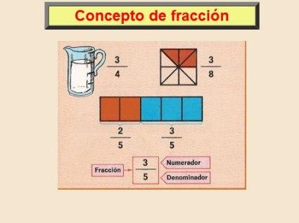 20110117165442-concepto-de-fraccion-800x600-.jpg