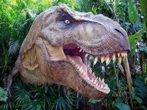 20151030180151-t-rex-donosaurus-dinosaurusi-dinosaur-najveci-zubi-800x600-.jpg