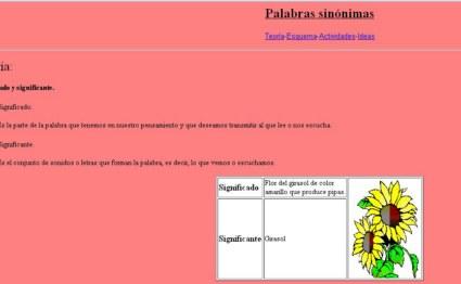 20101001154615-palabras-sinonimas-800x600-.jpg