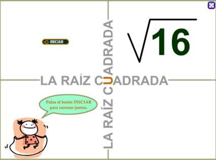 20101006151322-raiz-cuadrada-800x600-.jpg