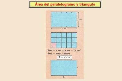 20110726154200-area-paraleogramo-y-triang-800x600-.jpg