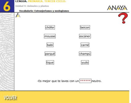 20110816172542-extranjerismos-y-neologismos-3-800x600-.jpg